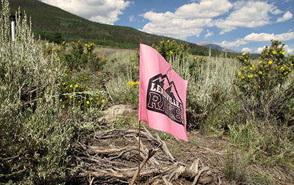 Photo of the Leadville Race Series Flag