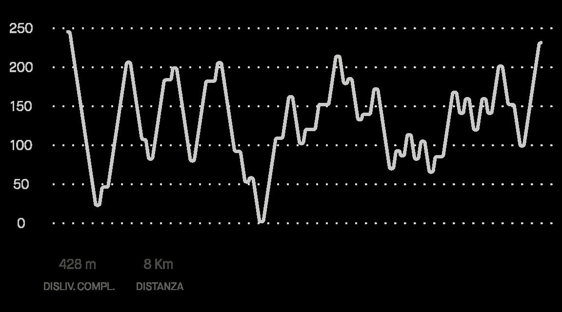 Grafico delle prestazioni
