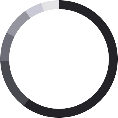 Race Pie Chart